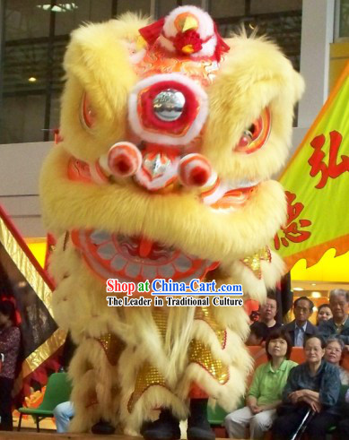Glow In Dark Luminous Happy Events and Lucky Opening Celebration Lion Dance Costume Complete Set