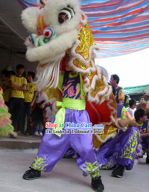 Happy Chinese New Year One Person Lion Dance Costume