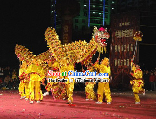 Professional Competition Net Dragon Dance Costume Complete Set