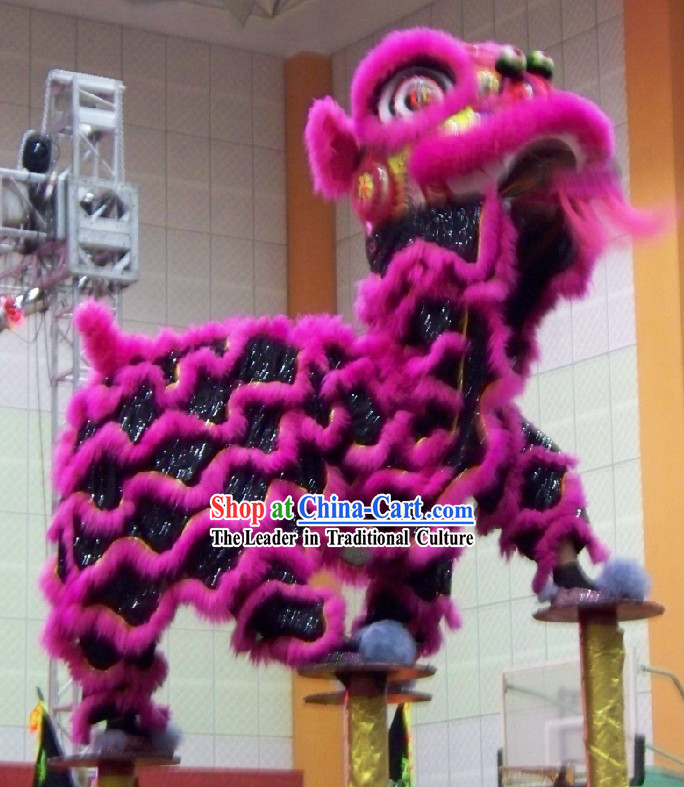 Supreme Grand Opening Celebration Chinese FUT SAN Lion Dance Equipment Set