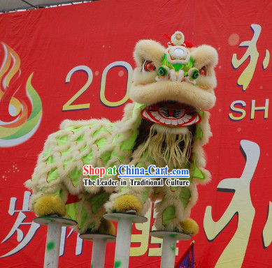Fluorescent Competition and Parade Lion Head and Costumes Complete Set