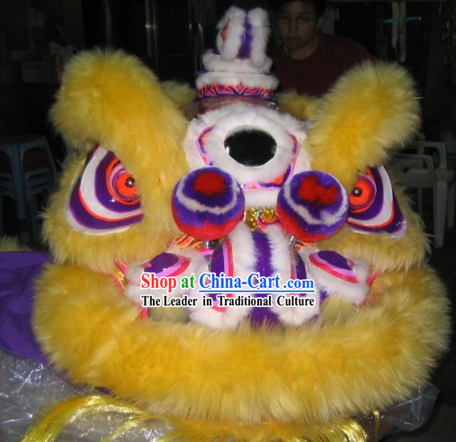 Teenager Size Luminous Lion Dance Costumes Complete Set