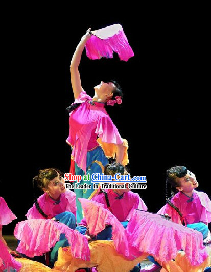 Traditional Chinese Butterfly Fan Folk Dance Costumes for Women