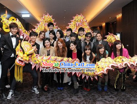 Wish You a Happy New Year Luminous Dragon Dance Costumes Complete Set