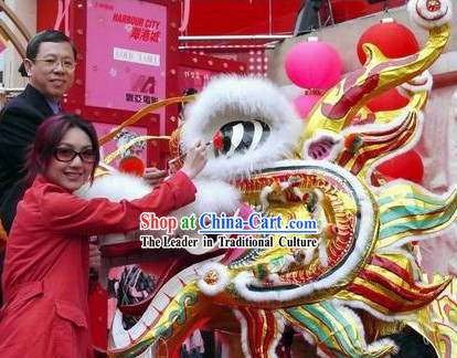 Supreme Shopping Mall Opening Southern Style Dragon Dance Costume Complete Set