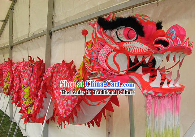 Chinese New Year Pink Dragon Dance Costume for 9-10 Females