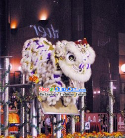Grand Opening Ceremony Performance Lion Dance Costume Complete Set
