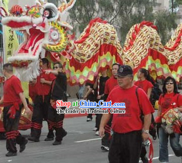Best Chinese Southern Dragon Dance Costume Complete Set