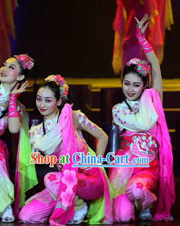 Classical Chinese Plum Blossom Dance Costumes Complete Set
