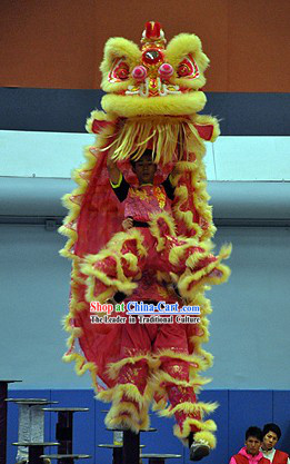 Top Friendly and Powerful Hand Made and Painted Lion Dance Head and Costumes Complete Set