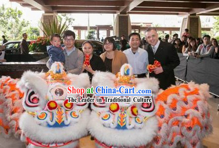 Five Stars Hotel Use Lion Dance Costume Complete Set