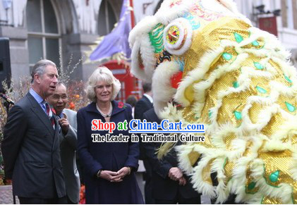 Important Ceremony Performance Lion Dance Costumes Complete Set
