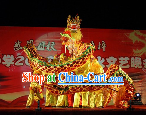 Professional Parade Chinese Adult Dragon Costume Complete Set