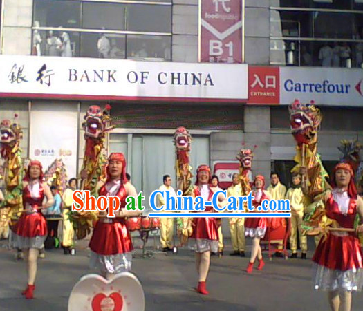 Chinese New Year Parade Dragon Costume for One Person