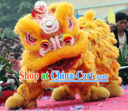 Chinese Festival Lion Costume Complete Set