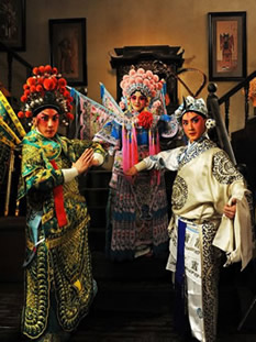 Beijing Opera and other Opera Costumes