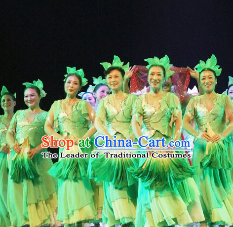 Chinese Classical Leaf Dance Costumes and Headwear Complete Set for Women