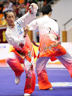 Kung Fu and Tai Chi Suits