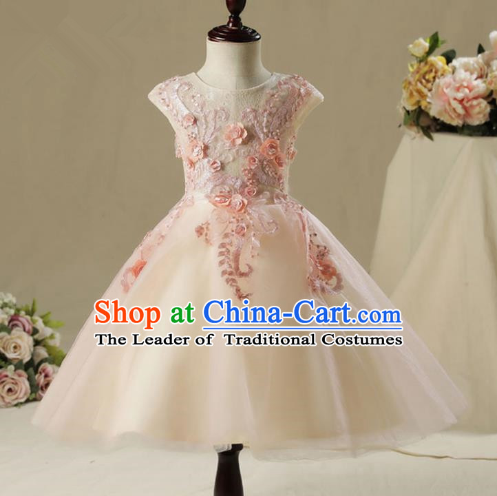 Children Model Show Dance Costume Embroidery Bubble Dress, Ceremonial Occasions Catwalks Princess Pink Full Dress for Girls