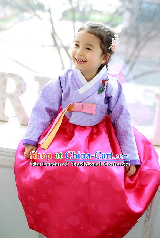 Traditional Korean Handmade Formal Occasions Costume Embroidered Purple Blouse and Pink Dress Hanbok Clothing for Girls