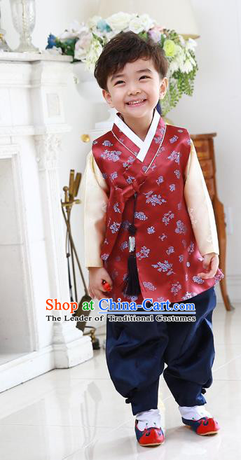 Asian Korean National Traditional Handmade Formal Occasions Embroidered Thronfolger Costume Wedding Red Hanbok Clothing for Boys