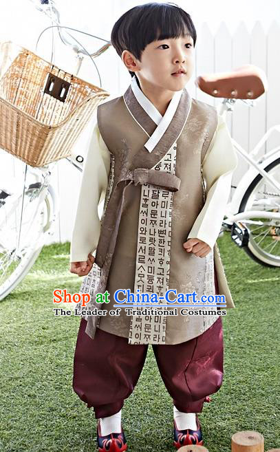 Asian Korean National Traditional Handmade Formal Occasions Boys Embroidery Brown Hanbok Costume Complete Set for Kids