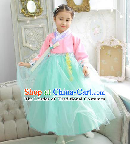 Asian Korean National Handmade Formal Occasions Wedding Girls Clothing Embroidered Pink Blouse and Green Veil Dress Palace Hanbok Costume for Kids