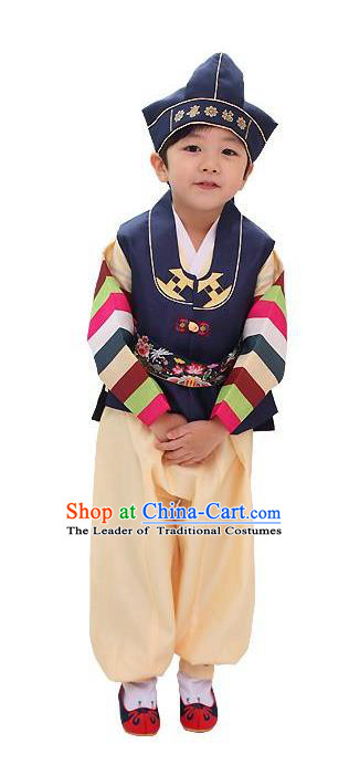 Traditional Korean Handmade Hanbok Embroidered Navy Clothing, Asian Korean Apparel Hanbok Embroidery Bridegroom Costume for Kids