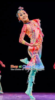 Traditional Chinese Classic Stage Performance Dance Costume, Chinese Folk Dance Ballet Dance Clothing for Women