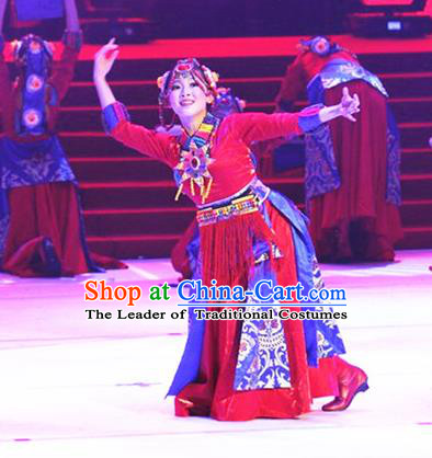 Traditional Chinese Zang Nationality Dancing Costume, Tibetan Female Folk Dance Ethnic Pleated Skirt, Chinese Minority Nationality Red Dress for Women