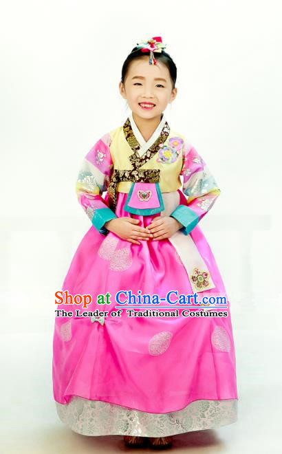 Traditional South Korean Handmade Hanbok Children Embroidery Birthday Pink Dress, Top Grade Korea Hanbok Costume Complete Set for Kids