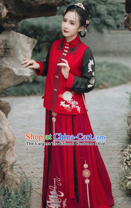 Chinese Ancient Embroidered Costumes Ming Dynasty Young Lady Hanfu Dress for Women
