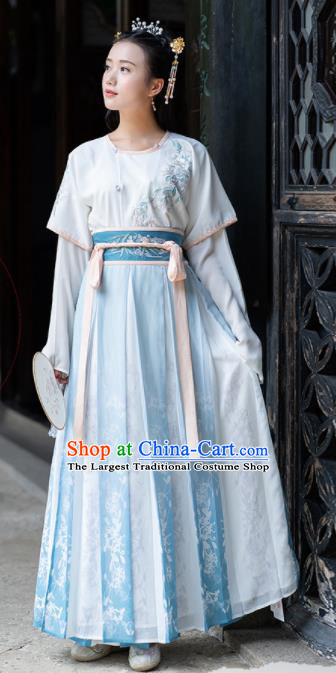 Ancient Chinese Tang Dynasty Princess Costumes Fairy Embroidered Hanfu Dress for Women