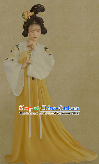 Traditional Chinese Tang Dynasty Palace Lady Costumes Ancient Fairy Hanfu Dress for Women