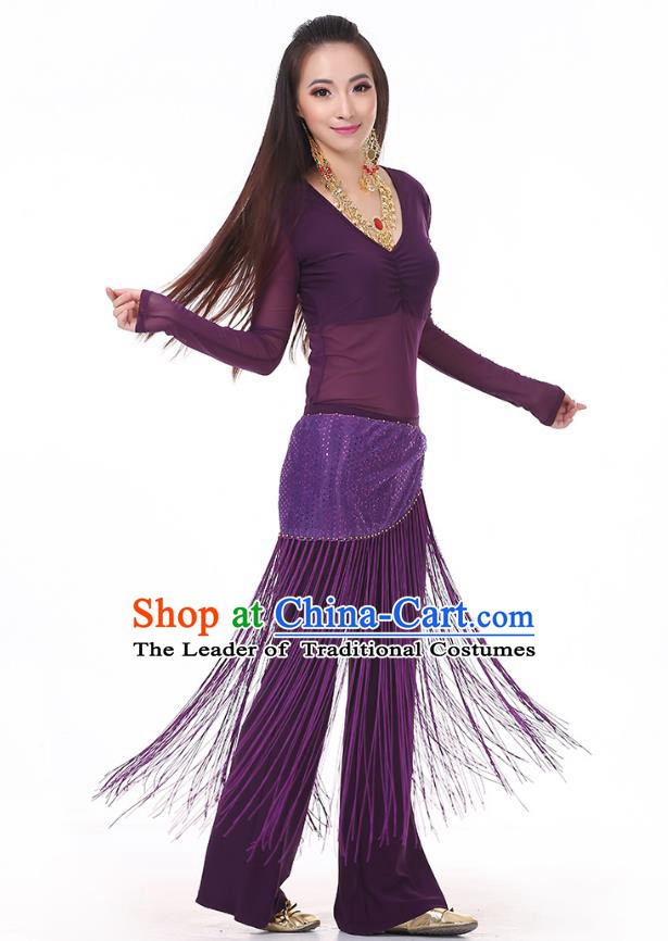 Asian Indian Belly Dance Purple Costume Stage Performance India Raks Sharki Dress for Women