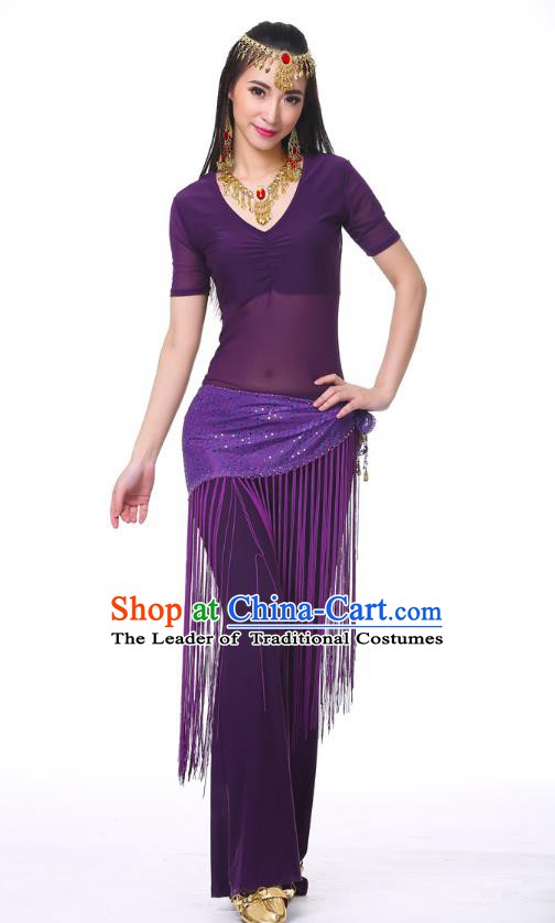 Indian Belly Dance Costume India Raks Sharki Purple Suits Oriental Dance Clothing for Women