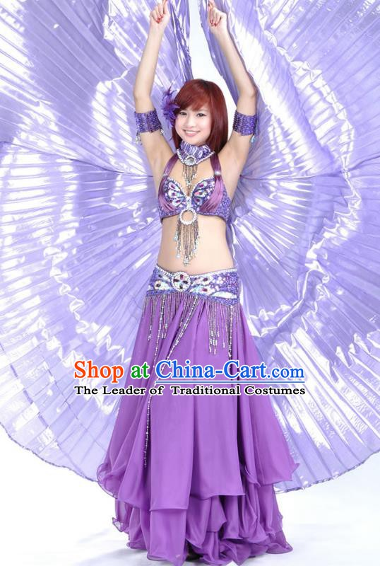 Indian Bollywood Belly Dance Purple Dress Clothing Asian India Oriental Dance Costume for Women