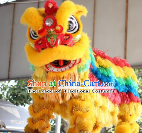 Top Grade Chinese Traditional Colorful Wool Lion Head Professional Lion Dance Costumes Complete Set