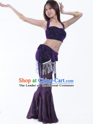 Traditional Indian Belly Dance Training Clothing India Oriental Dance Purple Outfits for Women
