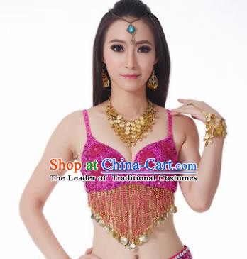 Indian Belly Dance Flowers Rosy Brassiere Asian India Oriental Dance Costume for Women