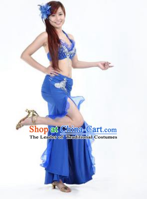 Traditional Indian Stage Oriental Dance Royalblue Dress Belly Dance Costume for Women