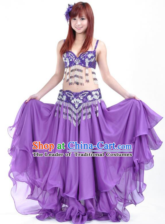 Asian Indian Traditional Oriental Dance Purple Dress Belly Dance Stage Performance Costume for Women