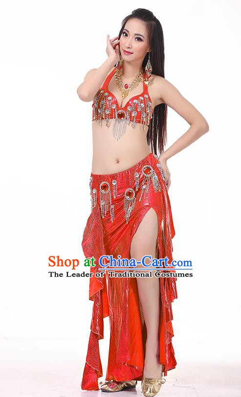 Top Indian Belly Dance Red Dress India Traditional Raks Sharki Oriental Dance Performance Costume for Women