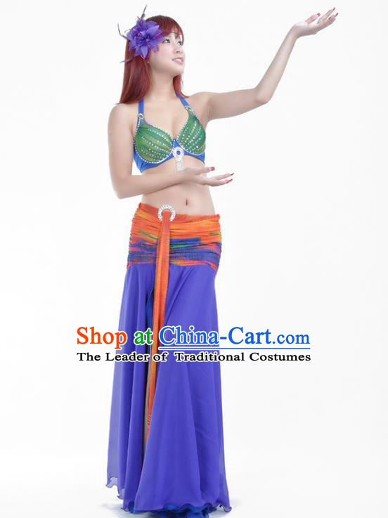 Indian Traditional Belly Dance Costume Classical Oriental Dance Purple Dress for Women