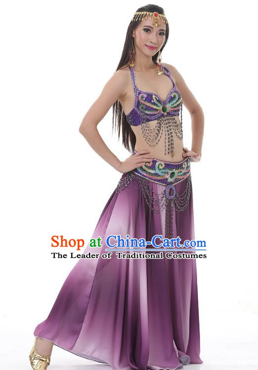 Traditional Bollywood Belly Dance Sexy Purple Dress Indian Oriental Dance Costume for Women