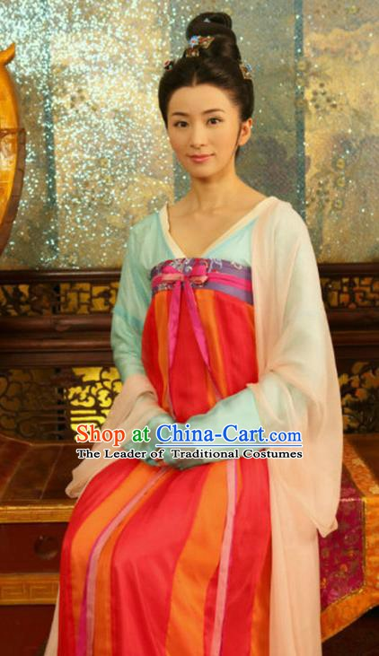 Chinese Traditional Tang Dynasty Palace Lady Embroidered Dress Replica Costume for Women