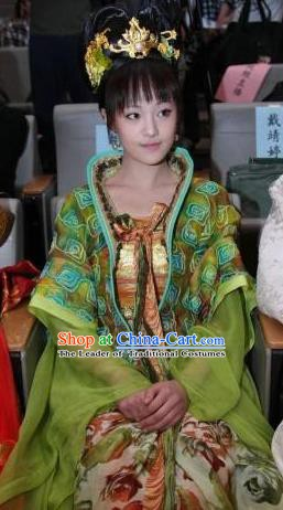 Traditional Chinese Ancient Palace Lady Tang Dynasty Embroidered Dress Replica Costume for Women