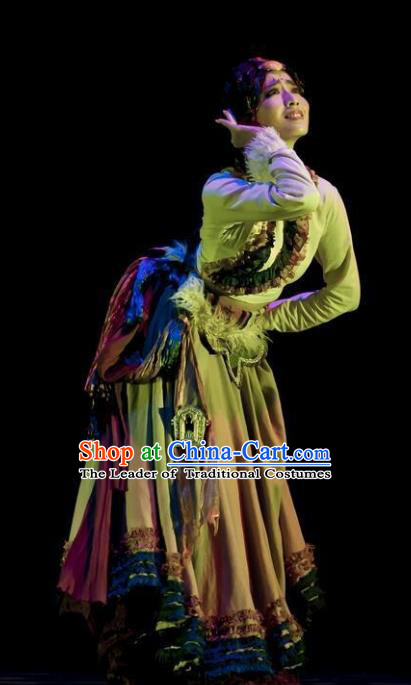 Traditional Chinese Tibetan Dance Ethnic Costume, Folk Dance Zang Minority Nationality Dance Clothing for Women