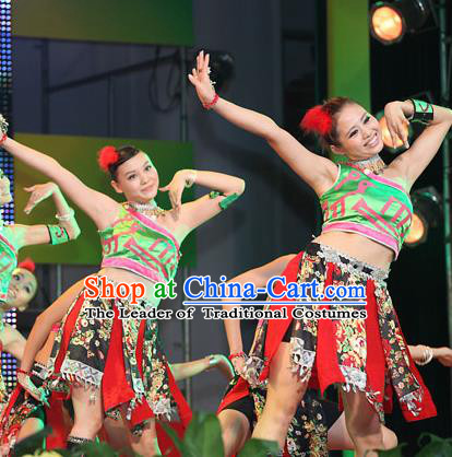 Traditional Chinese Zhuang Nationality Dance Costume, China Folk Dance Classical Dance Clothing for Women