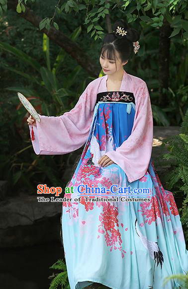 Chinese Ancient Peri Printing Crane Blue Hanfu Dress Tang Dynasty Princess Costumes for Rich Women
